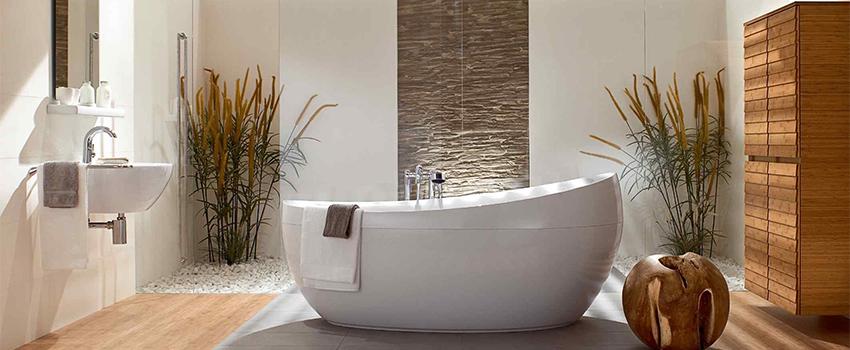 Las mejores plantas para el baño